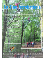 Affiche Tine acrobatique 2020